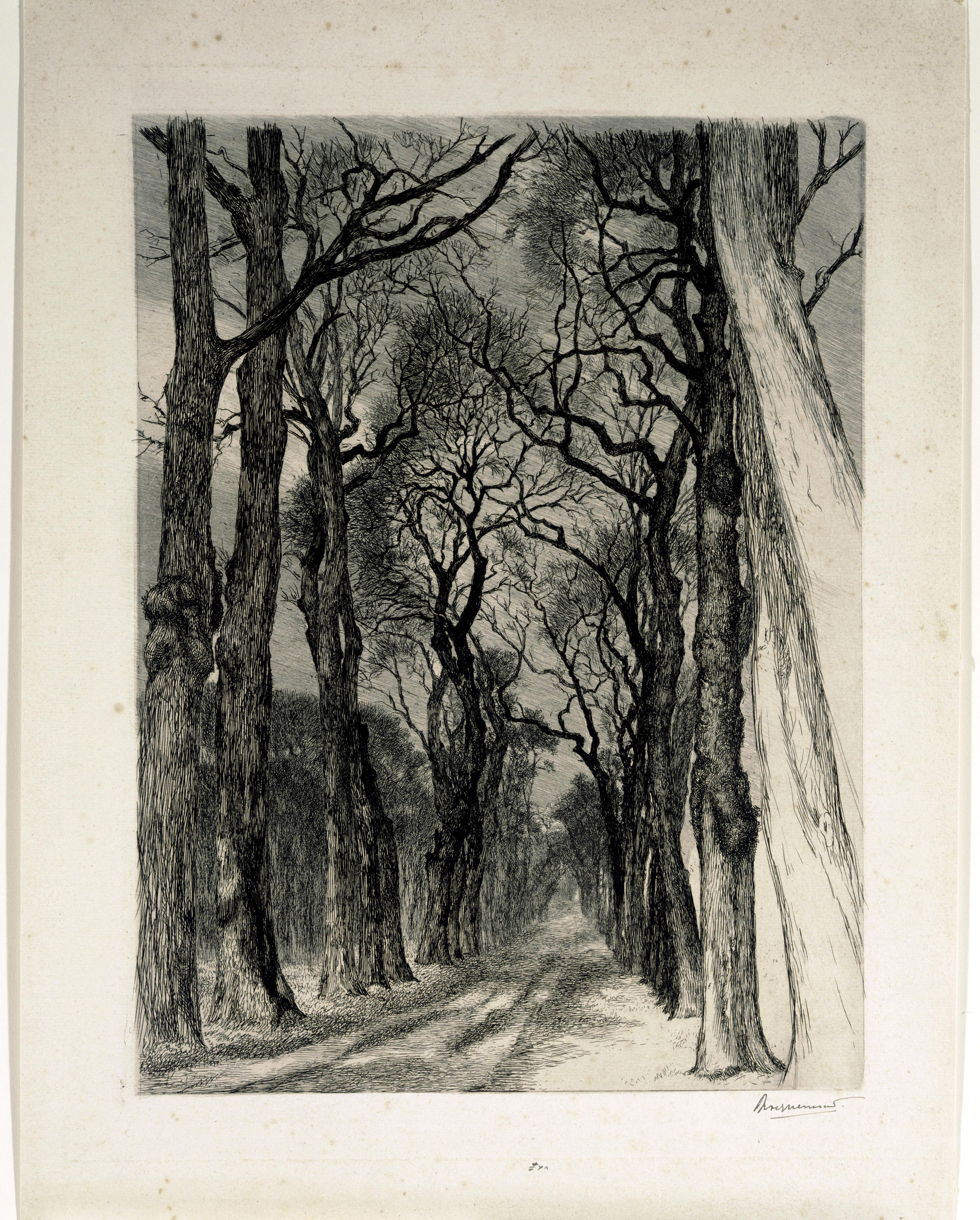 Félix Bracquemond, A Path in the Park of Saint-Cloud in Winter, 1894