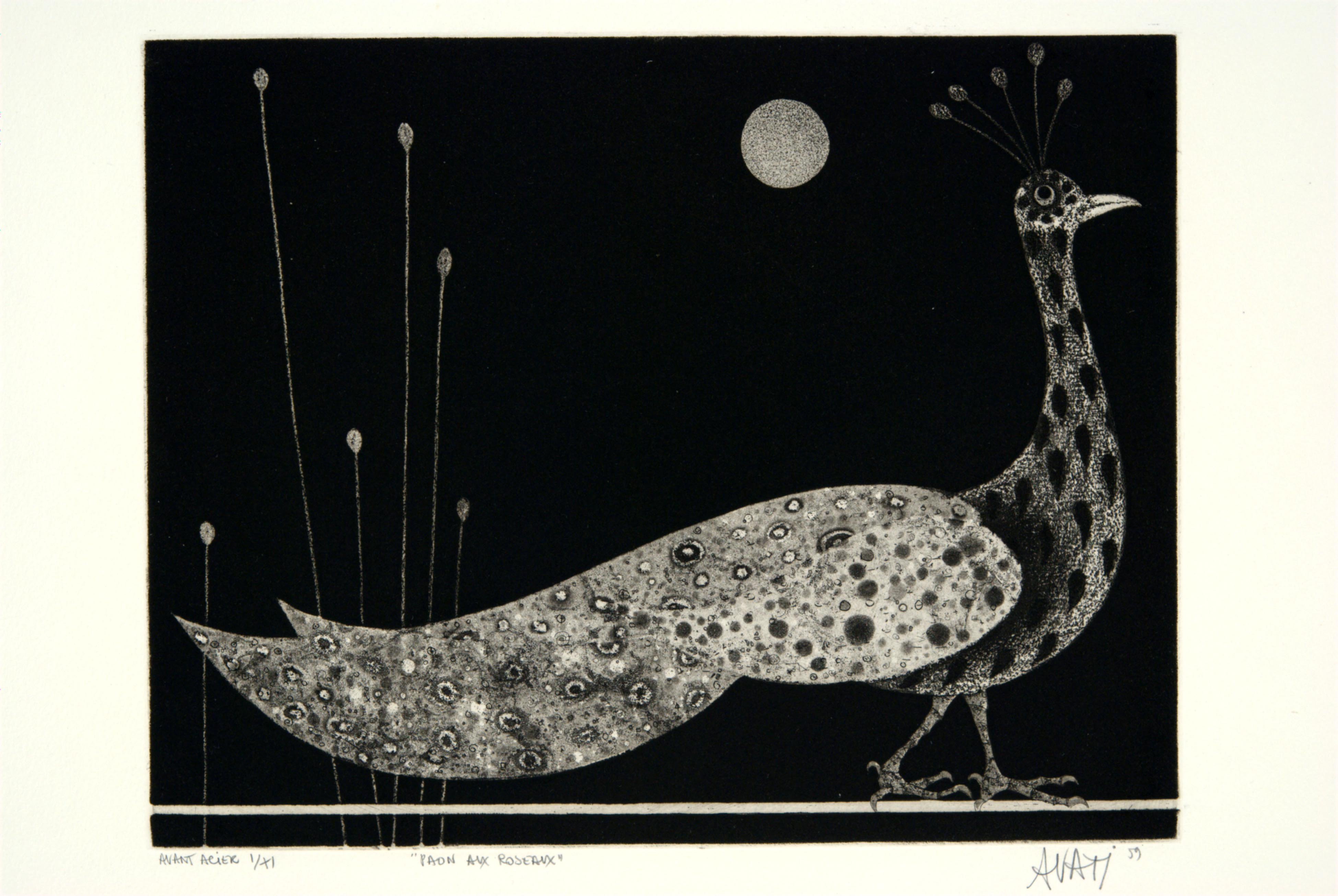 Mario Avati, Peacock with Reeds, June 1959