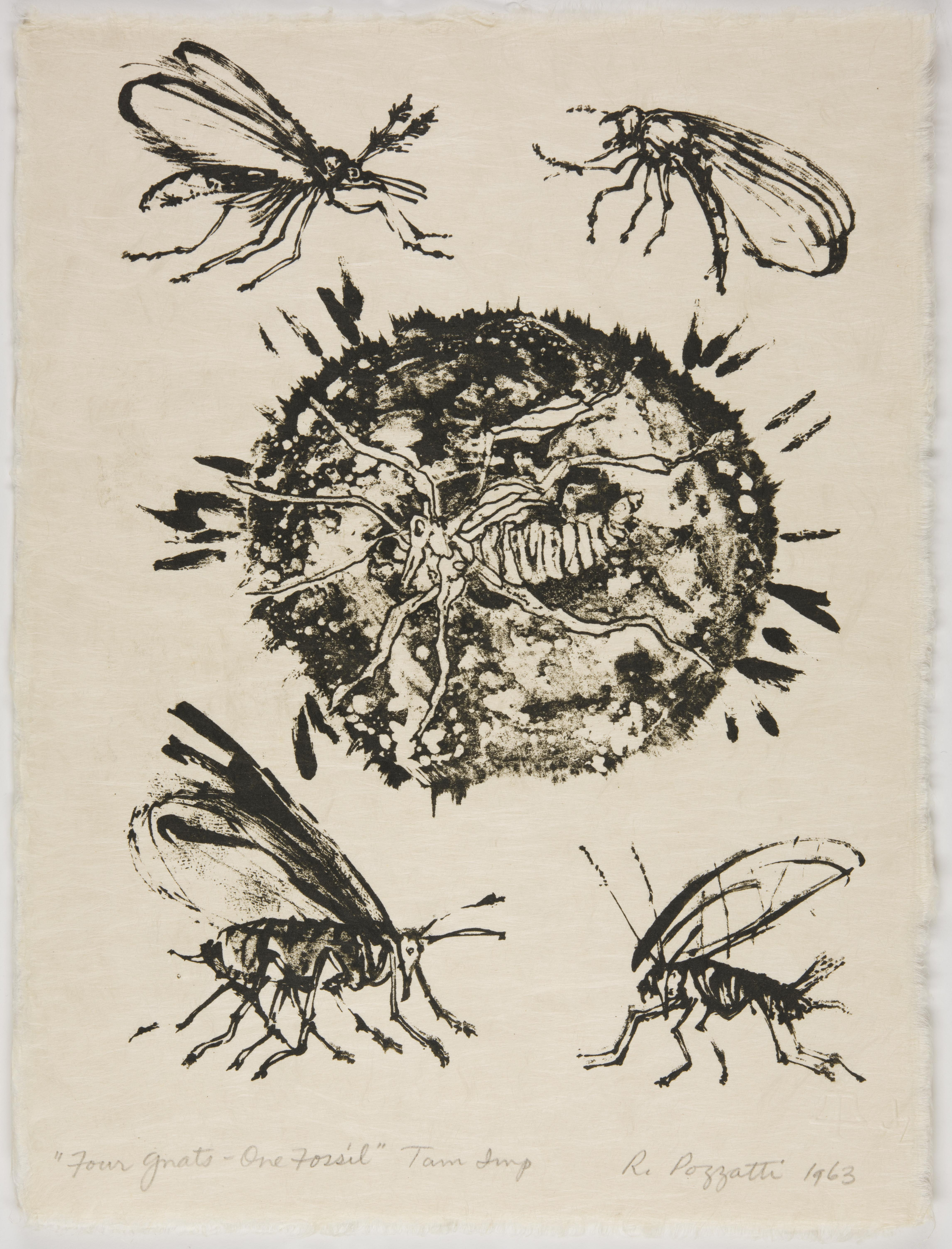 Rudy Pozzatti, Four Gnats, One Fossil (VI), March 21-25, 1963
