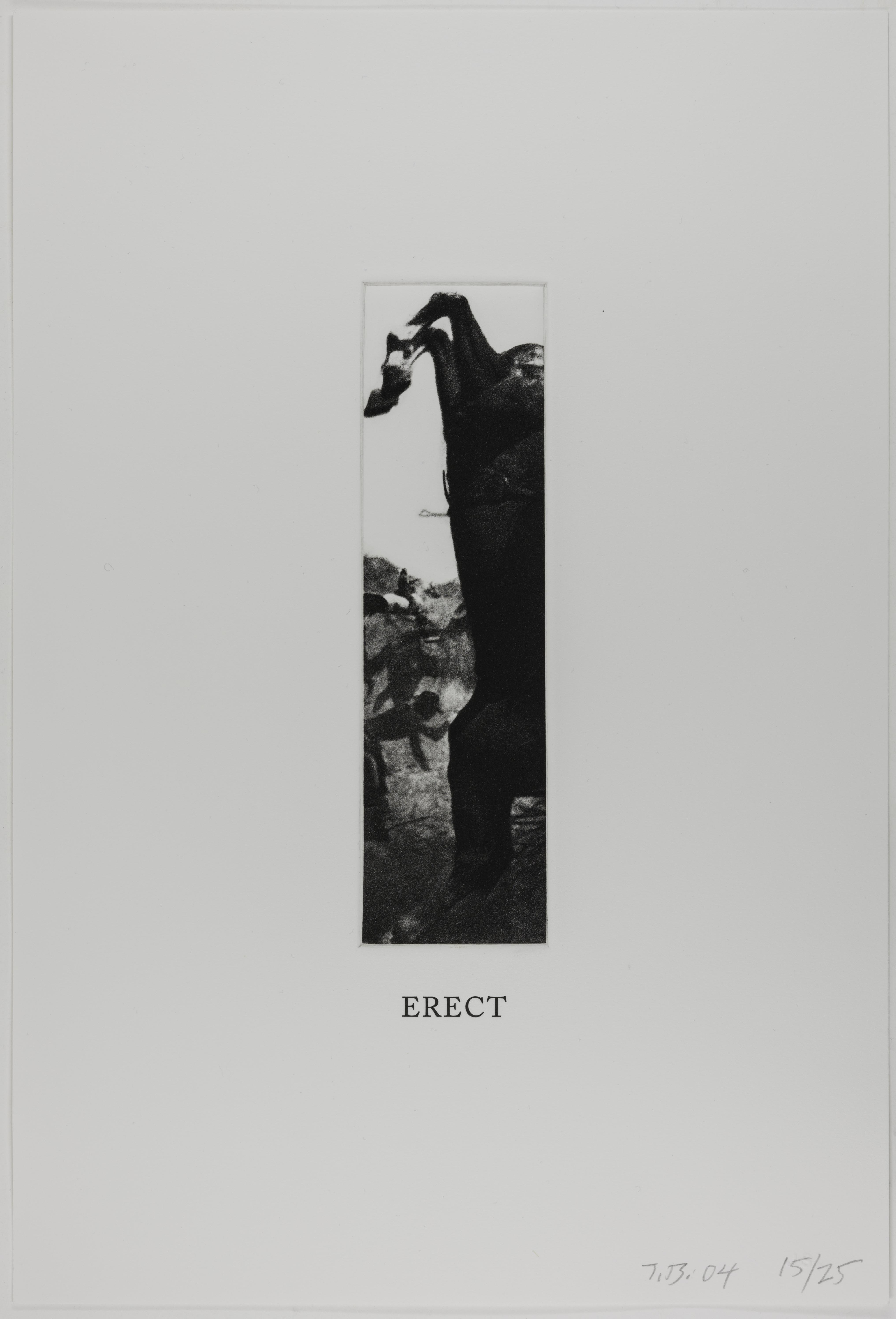 John Baldessari, Erect (Some Narrow Views), 2004