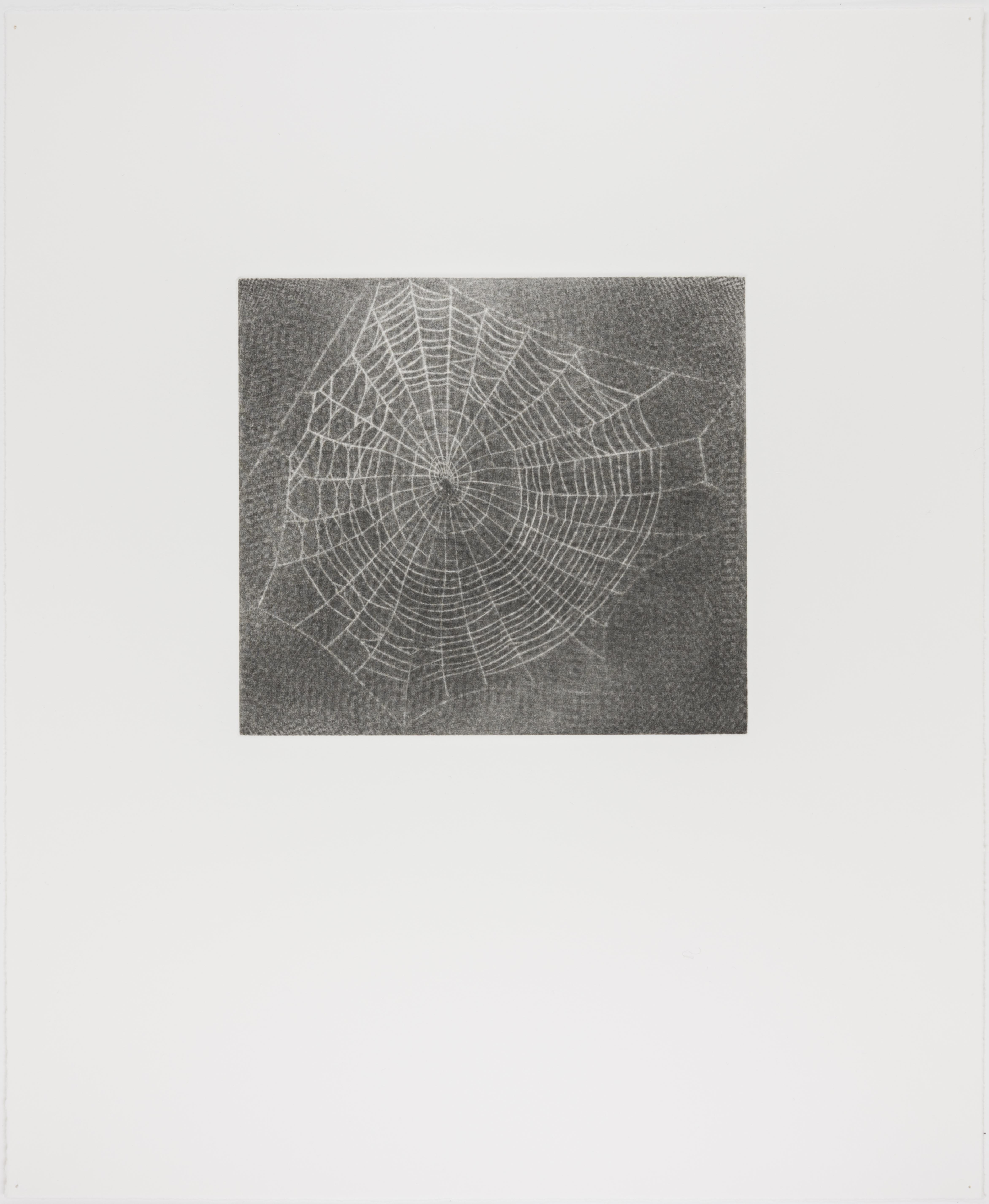 Vija Celmins, State proof for Web #1, [n.d.]