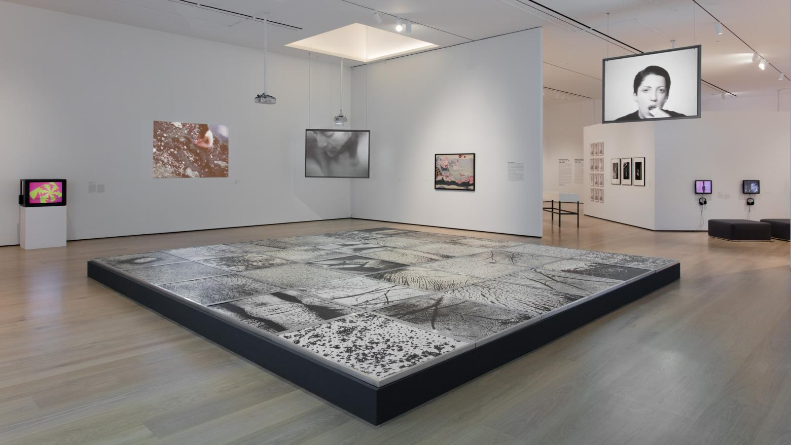 "In the Body as Landscape section of the exhibition, the floor is dominated by Epidermic Scapes (1977/1982), an installation by Vera Chaves Barcellos composed of large scale photographs showing details of the body. Projected on the left wall is Ana Mendiata's Corazón de Roca con Sangre (Rock Heart with Blood) (1975), in which she takes a heart-shaped rock and covers it in blood, laying it in one of her ""Siluetas"" sculptures before placing her naked body over it."