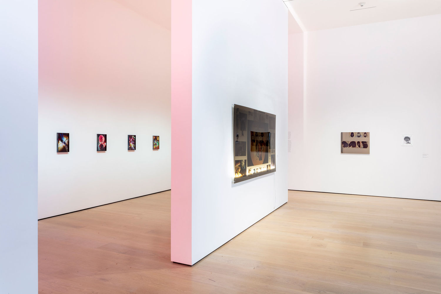 A view of a gallery with a floating wall in the middle, where a lightbox collage hangs