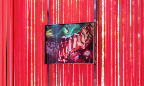 A colorful, fleshy photograph hanging against a wall of red ribbons